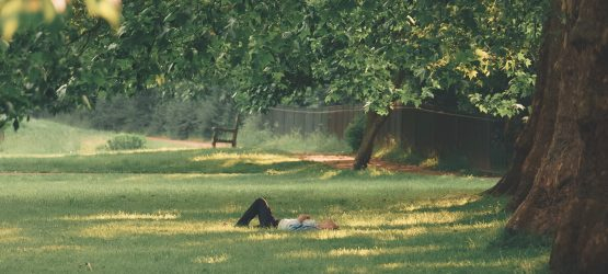 a student lying on the green grass under trees