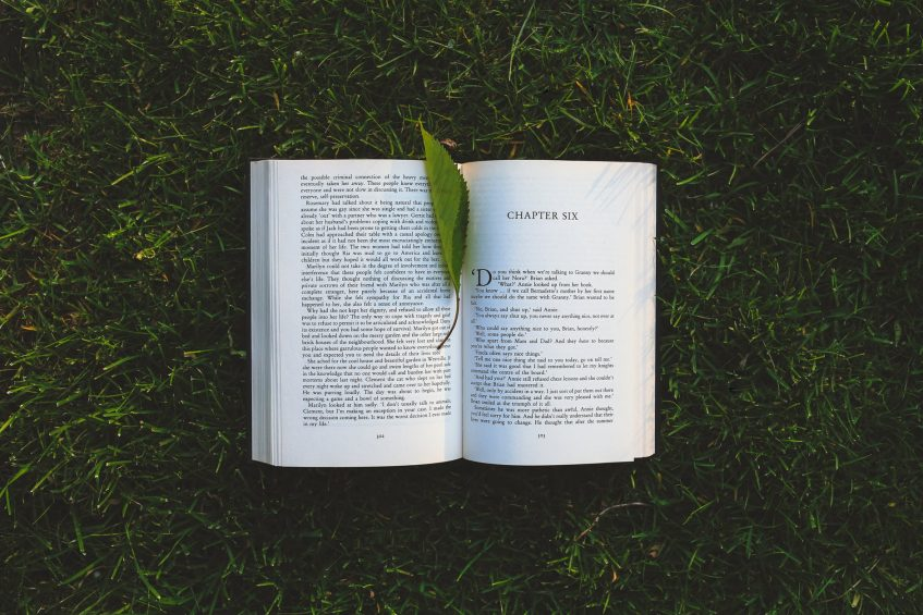 an opened book lying on the grass