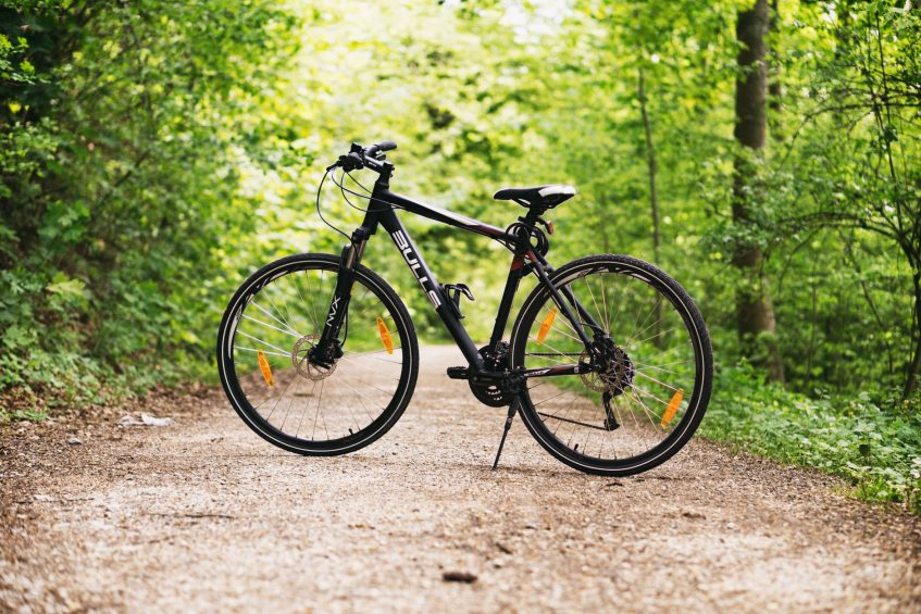 a bike in the forest