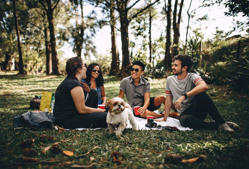 four friends having a picnic