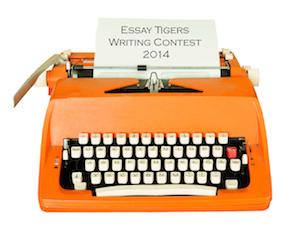 Buy scholarship essay